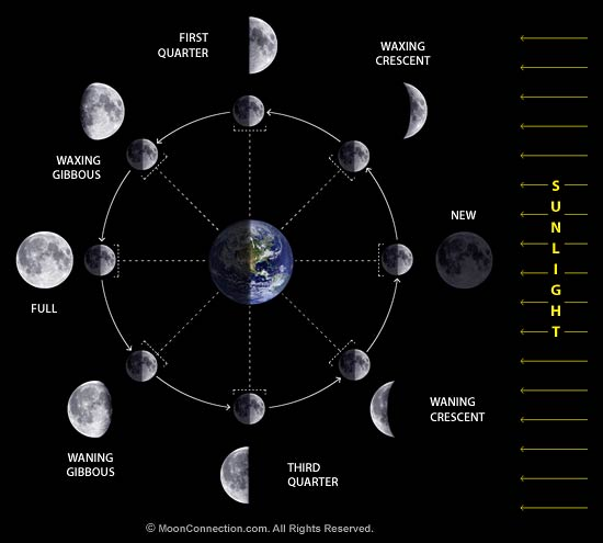 MoonConnection.com All Rights Reserved. This moon phases diagram is